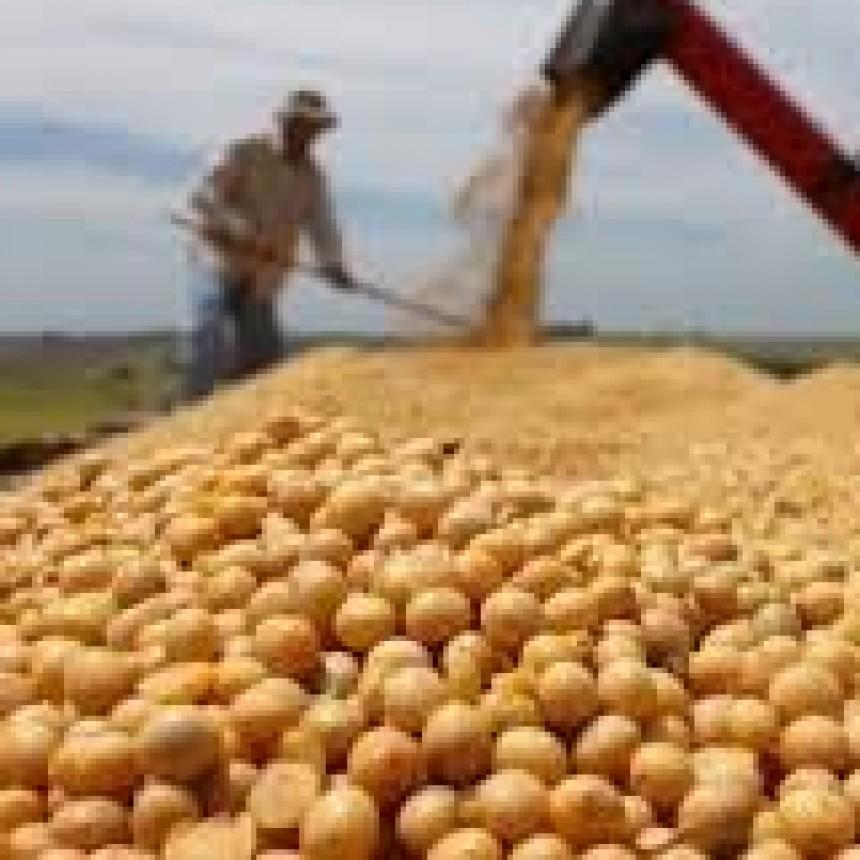 ASÍ QUEDO EL NUEVO REGIMEN DE RETENCIONES AL AGRO